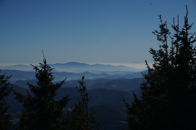 """Гледка от връх """"Свобода"""""""